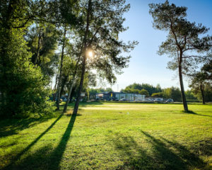 Golfen in Bamberg - Golfplatz - Sonne